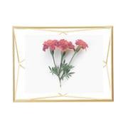プリズマ フォトディスプレイ 4×6 マットブラス [写真立て]