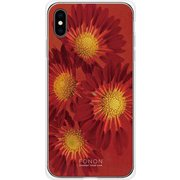 GCN-FR01-E-TL [GLASS PRINT iPhone XS Max FLORAL Aflican Daisy TL]