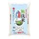 無洗米 新潟産こしいぶき 5kg 令和2年産