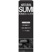 NS01 [ナチュラル炭 歯磨き]