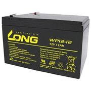 WP12-12 [制御弁式鉛蓄電池 UPS・非常電源用]