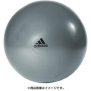 adidas ジムボール グレー 55cm