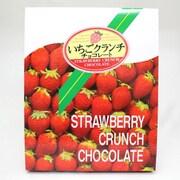 大阪心斎橋 いちごクランチチョコレート 15個入