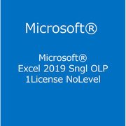 Excel 2019 Sngl OLP 1License NoLevel [ライセンスソフト]