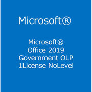 Office 2019 Government OLP 1License NoLevel [ライセンスソフト]