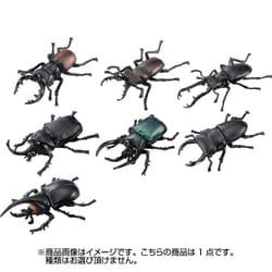 アニアくじ4 森林の王者 昆虫コレクション 1個 [コレクショントイ]