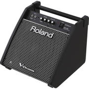 PM-100 [Personal Monitor 80W]