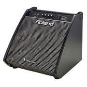 PM-200 [Personal Monitor 180W]