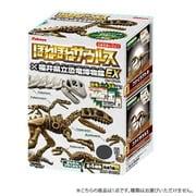 ほねほねザウルス 恐竜博物館EX 1個 [コレクション食玩]