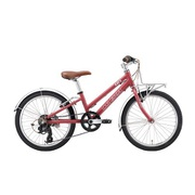 J20PLUS (AI) [子ども用自転車 TERRA COTTA ROSE 250MM]
