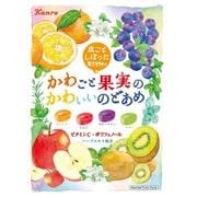 かわごと果実のかわいいのどあめ 65g