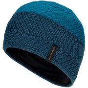 Alvier Beanie 1191-00500 50255sapphire-wing teal [アウトドア 帽子]