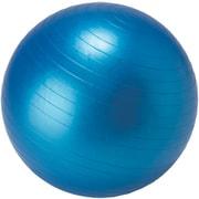 IBFG-5759 [フィットネスボール 65cm ブルー]