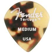 Tortuga 551 Shape, Medium (6)