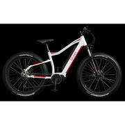 LB-MTB001 [スポーツ電動アシスト自転車 FAT-E BIKE 26×4.0 10段変速 36V10.4Ah WH/RE]