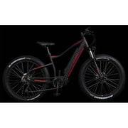 LB-MTB001 [スポーツ電動アシスト自転車 FAT-E BIKE 26×4.0 10段変速 36V10.4Ah BK/RE]