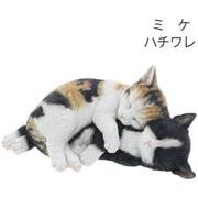 QY-82MIX [ベニーズキャット お昼寝中(ミケ / ハチワレ)]