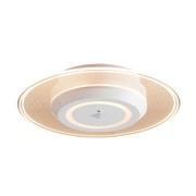 SCL-75LMS-LGP [小型シーリングライト 導光板 750lm 人感センサー付 電球色]