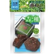 育てる水草の種 グリーンカーペット&ロック