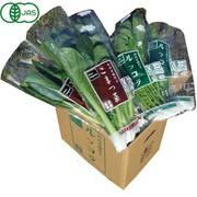 有機農法で作った野菜セット(小松菜、ルッコラ) 5回分回数券 [茨城県産 有機野菜2980円セット]