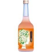 國盛 ジャスミン梅酒 9度 720ml [梅酒]