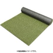 BP-30120 [防草人工芝 1m×20m]
