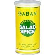 GABAN サラダスパイス 缶 100g