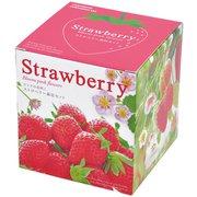GD-796 ピンク花咲くストロベリー栽培セット