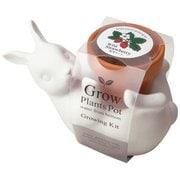 GD-86001 ポットフレンズ ウサギ ストロベリー