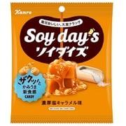 ソイダイズクランチ濃厚塩キャラメル味 50g
