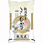 無洗米新潟県産こしひかり 5kg 令和2年産