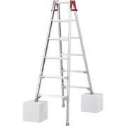 RYZ18B [ハセガワ 脚部伸縮式アルミはしご兼用脚立 RYZ型 6段]