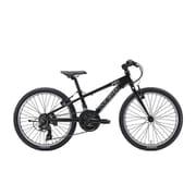 J22(270)(AK)LG BLACK [子ども用自転車 22インチ 270mm 18段変速 LG BLACK]