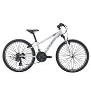 J24(300)(AK)LG WHITE [子ども用自転車 24インチ 300mm 21段変速 LG WHITE]