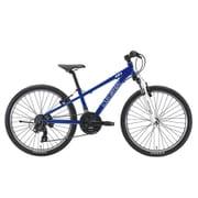 J24(300)(AK)LG BLUE [子ども用自転車 24インチ 300mm 21段変速 LG BLUE]