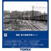 98735 [Nゲージ 急行貨物列車セット 10両]