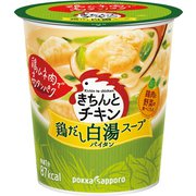 きちんとチキン 白湯スープ カップ 22.0g