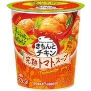 きちんとチキン トマトスープ カップ 23.9g