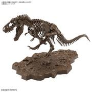 Imaginary Skeleton 1/32 ティラノサウルス [組立式プラスチックモデル]
