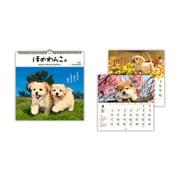 YDC-790-530 [リングカレンダー大 ほめわんこ]