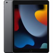 iPad(第9世代) 10.2インチ Wi-Fiモデル 256GB スペースグレイ [MK2N3J/A]