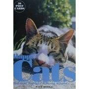 Happy Cats―日なたでゴロゴロ(30POST CARDS) [単行本]