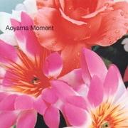 Aoyama Moment
