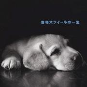 「盲導犬クイールの一生」