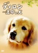 ディロン 運命の犬