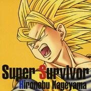 Super Survivor (PS2・Wii用ソフト『ドラゴンボールZ~スパーキング!メテオ』)