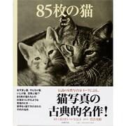 85枚の猫 [単行本]