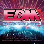 EDM~エレクトロニック・ダンス・マッドネス2~
