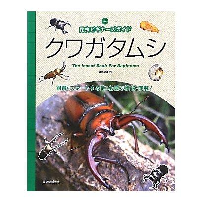 クワガタムシ―昆虫ビギナーズガイド [単行本]