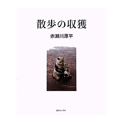 散歩の収獲―赤瀬川原平写真集 [単行本]